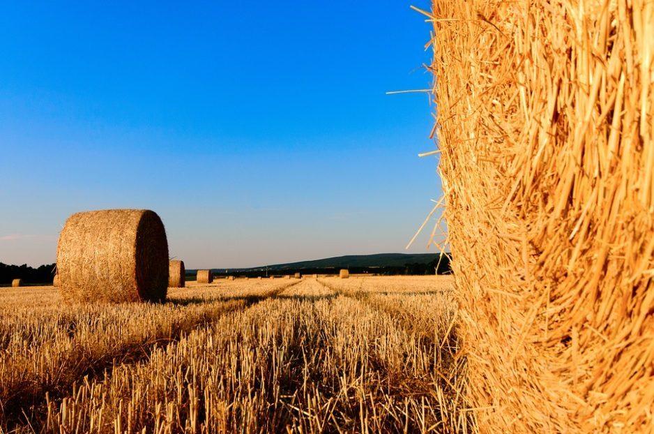 straw bales 1155003 960 7201