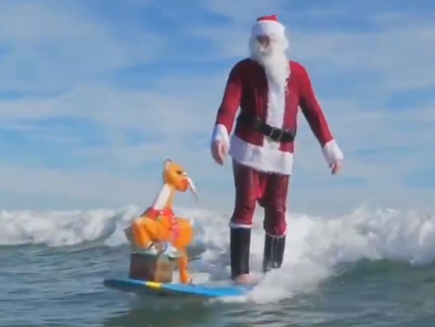 Заплыв Санта-Клаусов во Флориде собрал 40 000 долларов