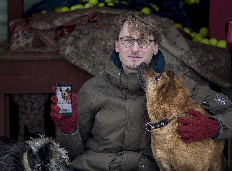 В Литве появился сайт знакомств для собак
