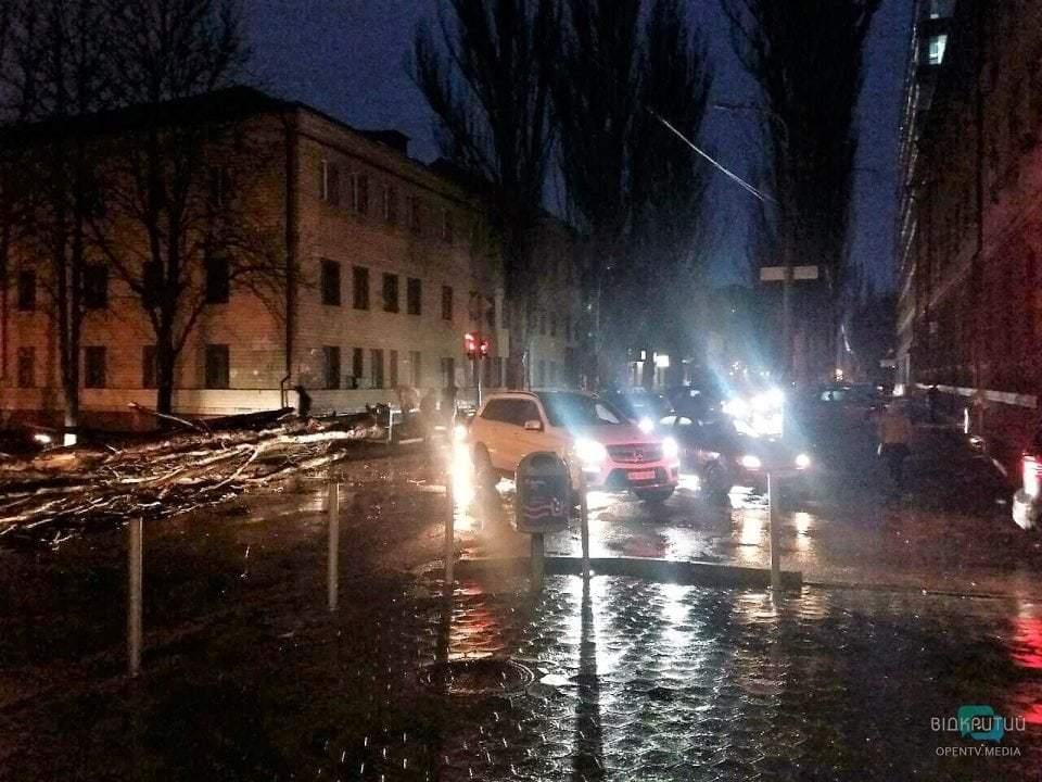 В Днепре на улице Гончара упало дерево: движение парализовано