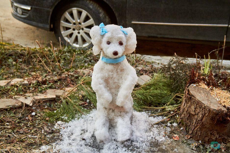sneg sobaka dnepr