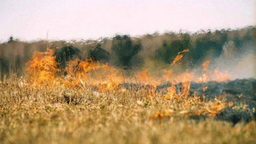 На территории Днепропетровской области сохраняется чрезвычайная пожарная опасность