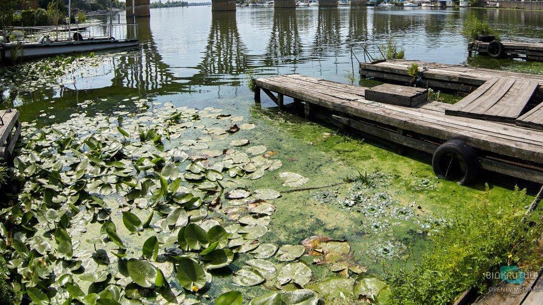 reka Dnepr zelen03