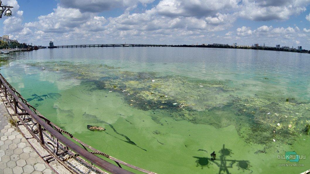 reka Dnepr zelen07