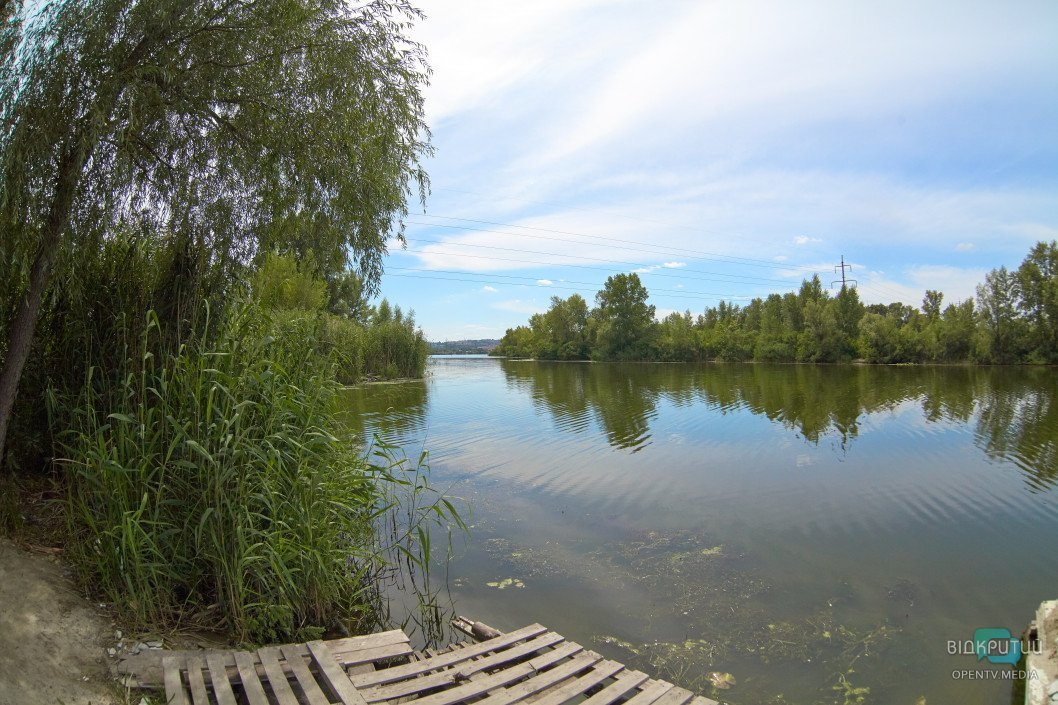 Природа у великому місті: зелена зона на житломасиві Ломівський