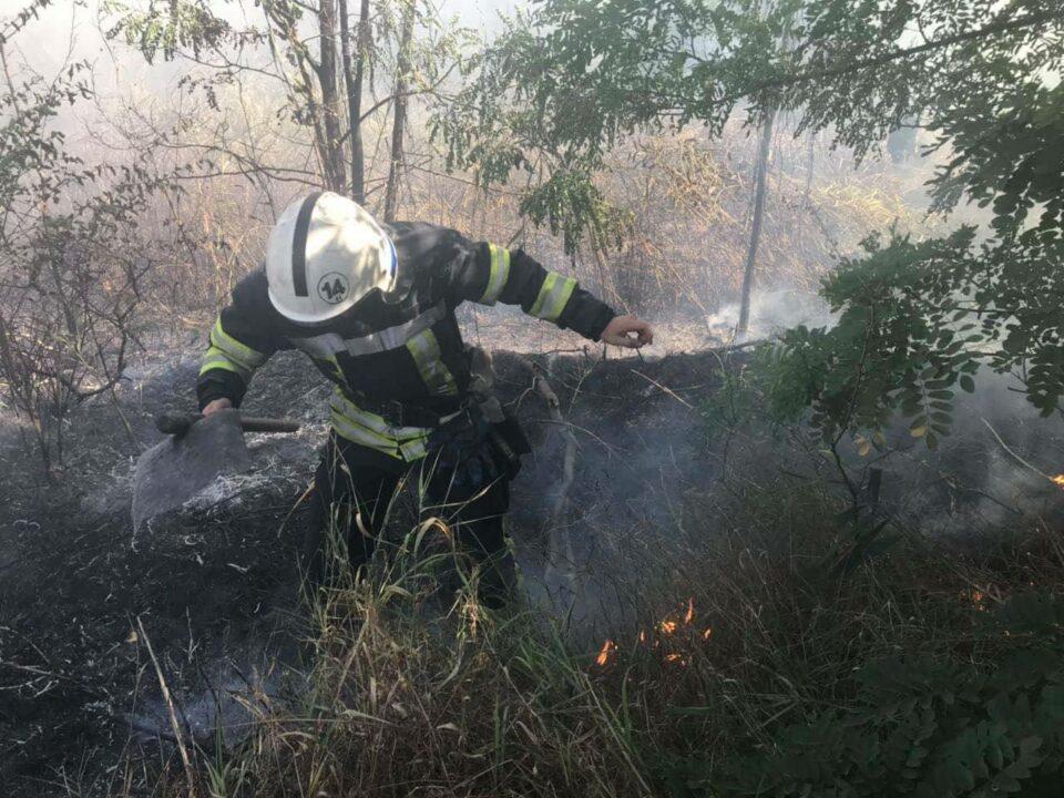 У Кривому Розі ліквідували пожежу в екосистемі