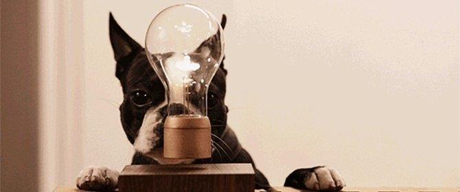 У трьох районах Дніпра 20 серпня не буде електроенергії