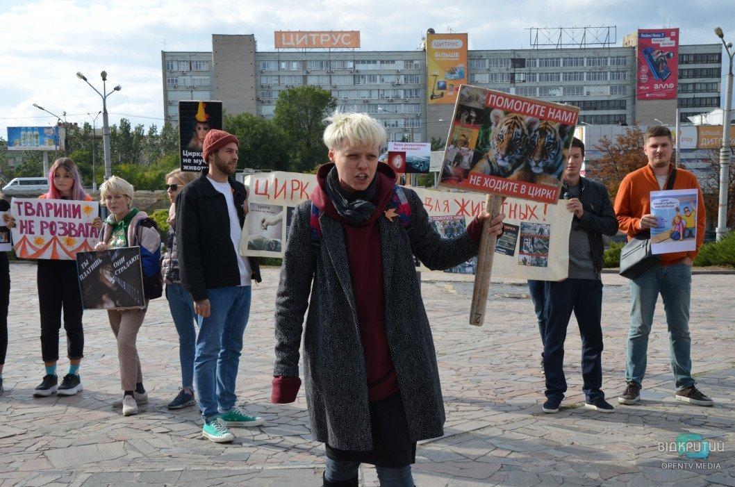 «Дурдом!»: в Днепре прошла акция за права животных