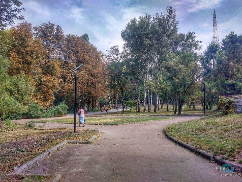 Дизайнерские лавочки и новые дорожки: как проходит реконструкция парка возле ДНУ