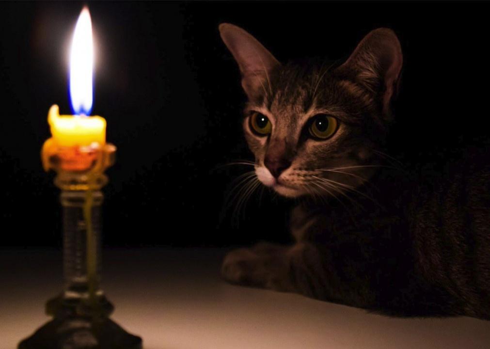 В Днепре в семи районах не будет света