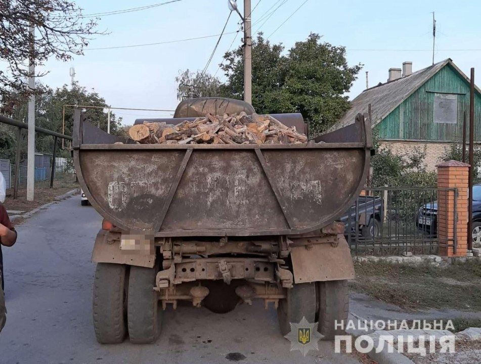 В Терновке полиция остановила автомобиль с незаконно спиленными деревьями