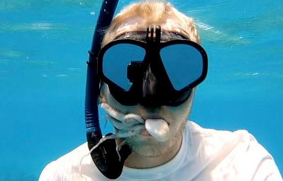 Дайвер записал видео, как крошечный осьминог спрятался у него во рту
