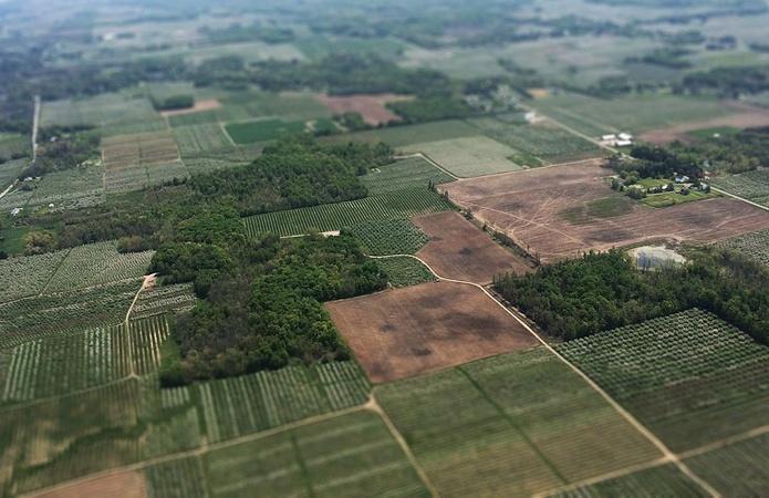 Госгеокадастр открыл данные о земельных участках
