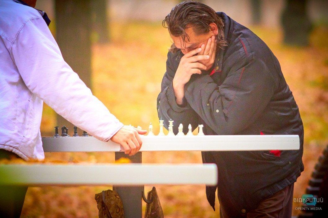 Как шахматисты проводят досуг в осеннем парке Днепра