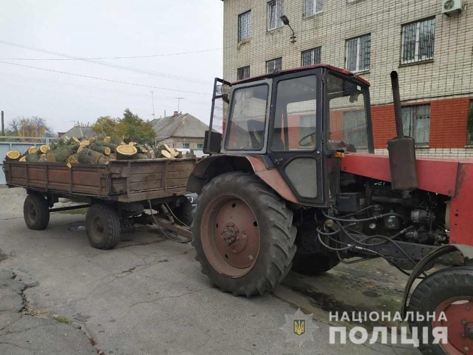 Патрульные Павлограда остановили вырубку дубов
