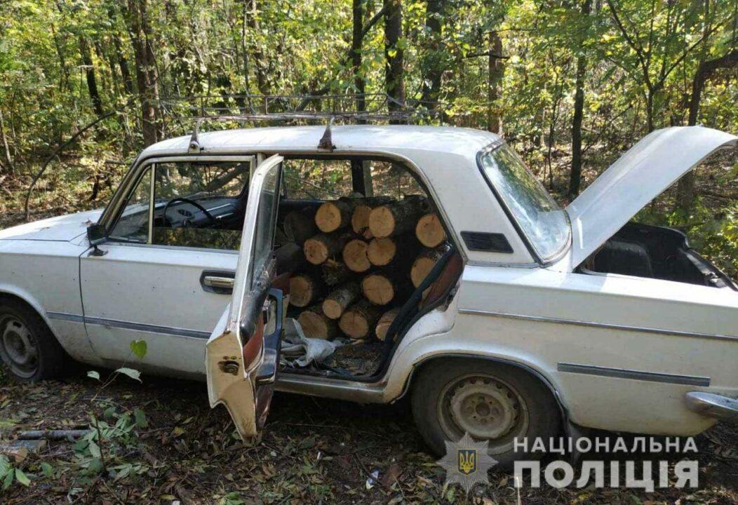 В Днепропетровской области задержали трех «черных» лесорубов