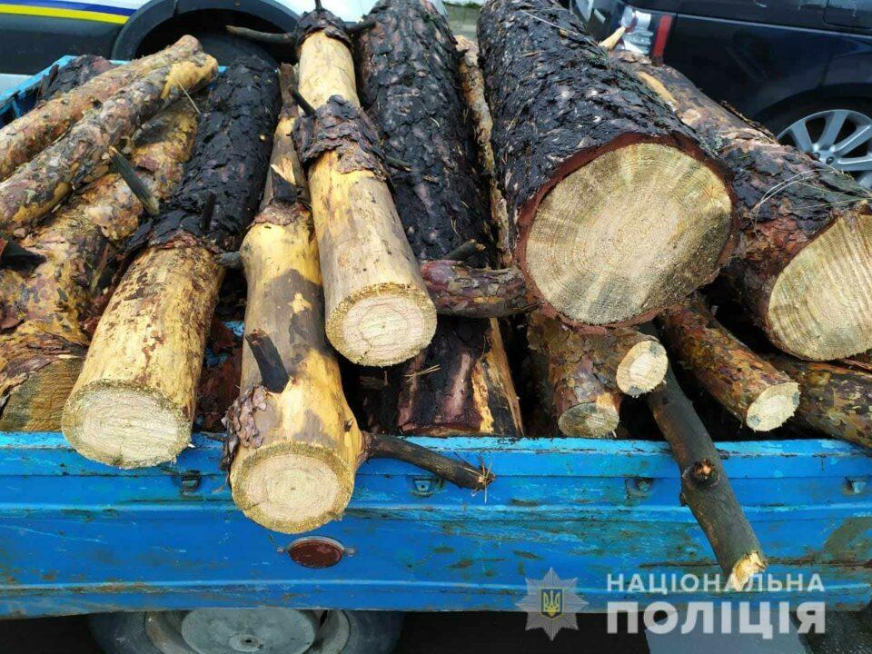 В Днепропетровской области полицейские обнаружили автомобиль со спиленными деревьями