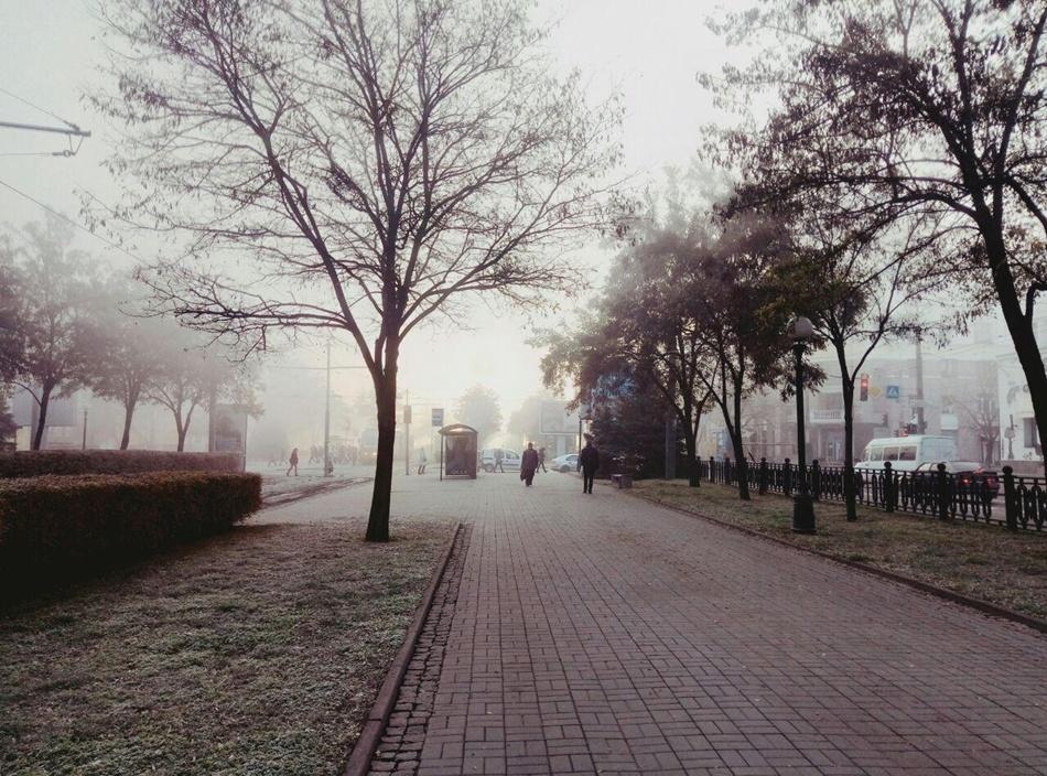 Опасный туман: какая погода будет сегодня в Днепре