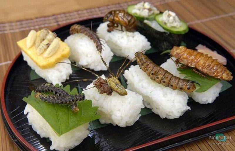 Жареные сверчки и филе каракатицы: 7 экзотических блюд, которые можно попробовать в кафе Днепра
