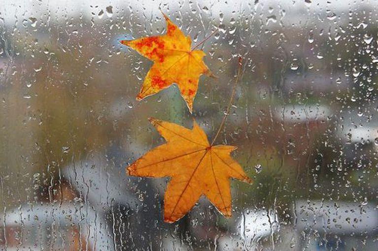 Какая будет погода в Днепре 27 ноября