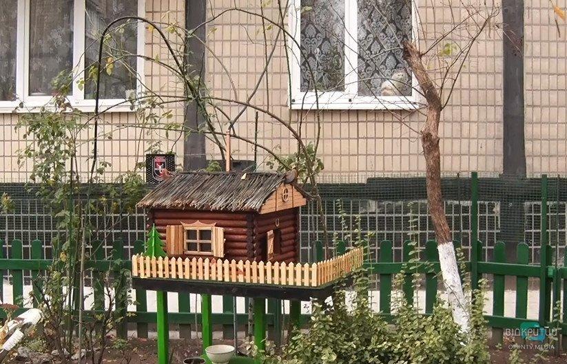 Дніпрянин створив для вуличних котів дім з опаленням