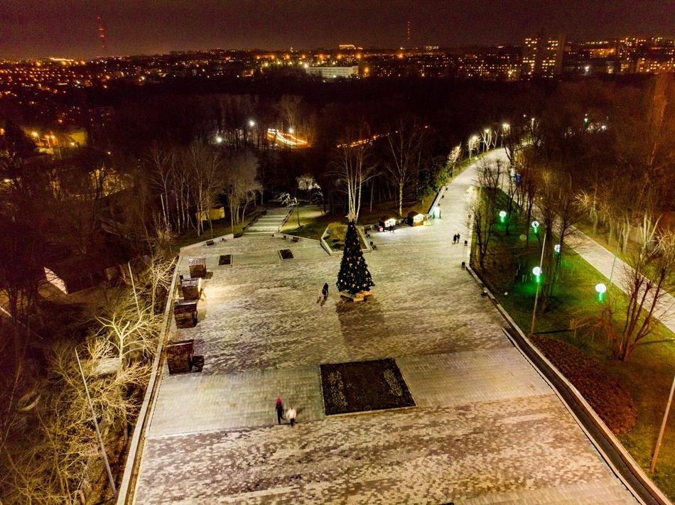 В парке Зеленый Гай установили новогоднюю елку (ФОТО)