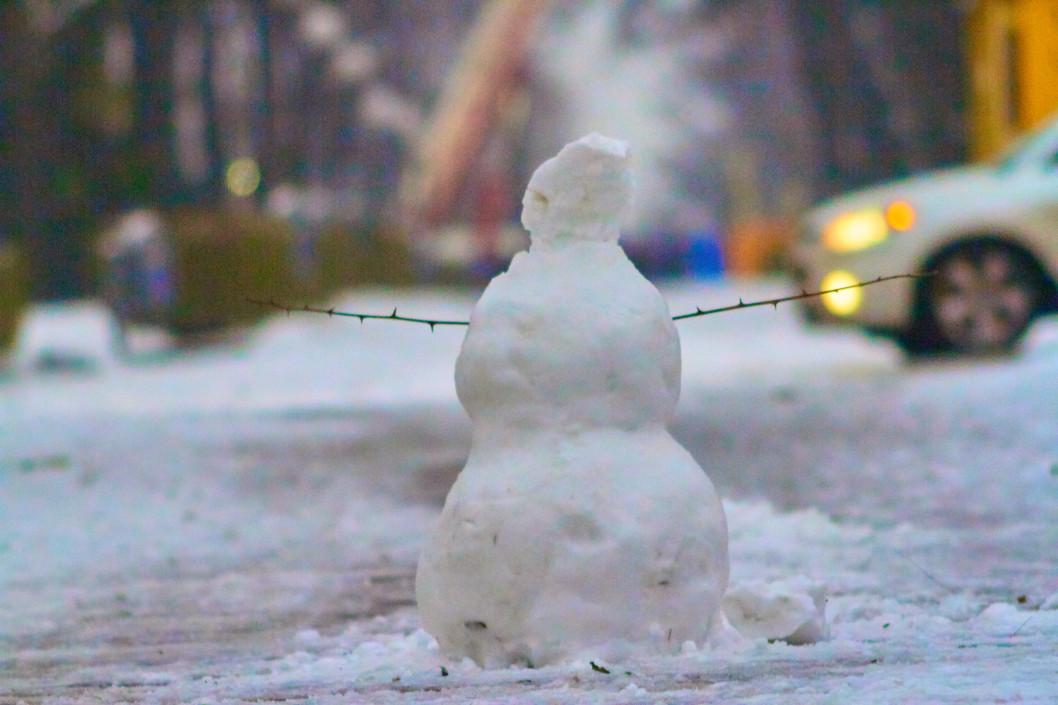 Первый снеговик в Днепре.