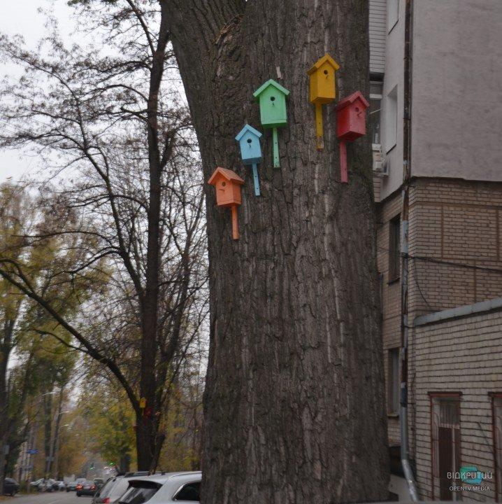 Разноцветные скворечники на деревьях в Днепре.