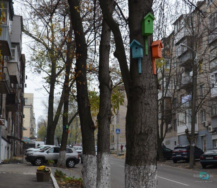Радужные домики для птиц в Днепре.