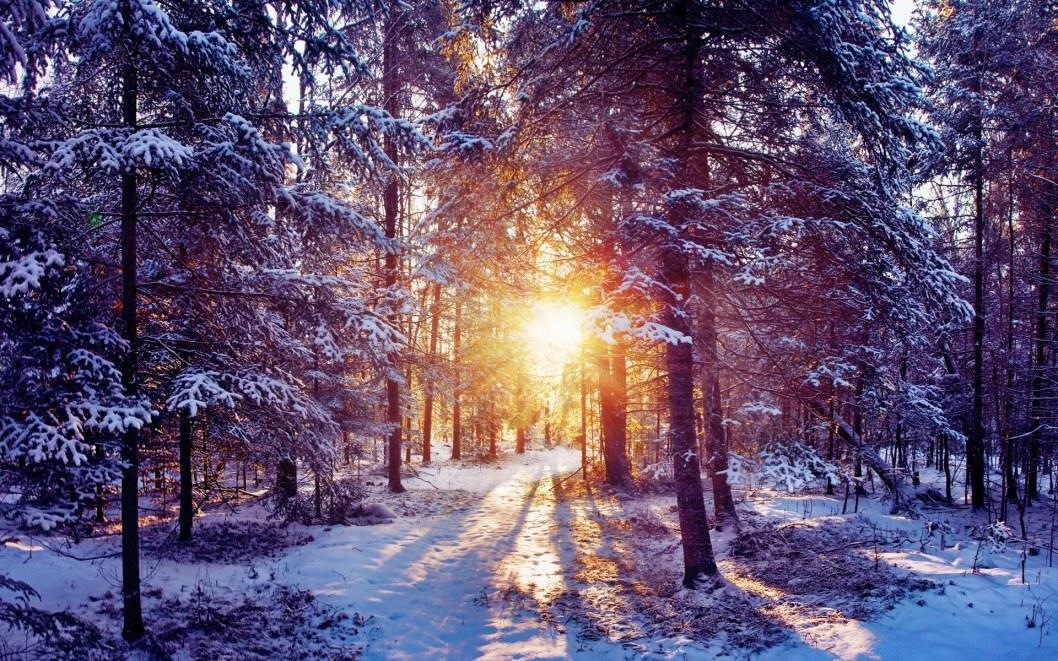 Какая погода будет в Днепре 24 января