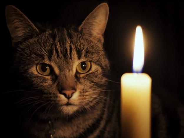 В Днепре несколько районов останутся без света: адреса