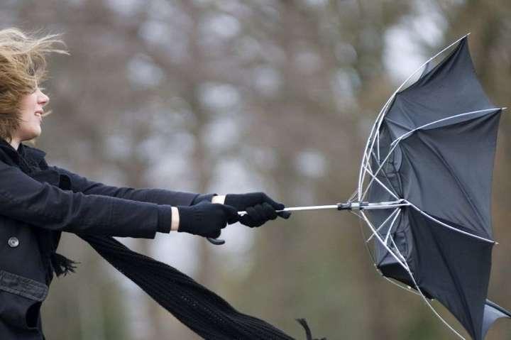 Сиди дома: ГСЧС предупредили об усилении ветра в Днепре и области