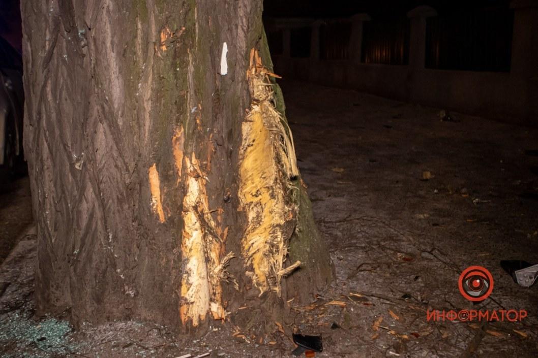 В инциденте пострадало и дерево