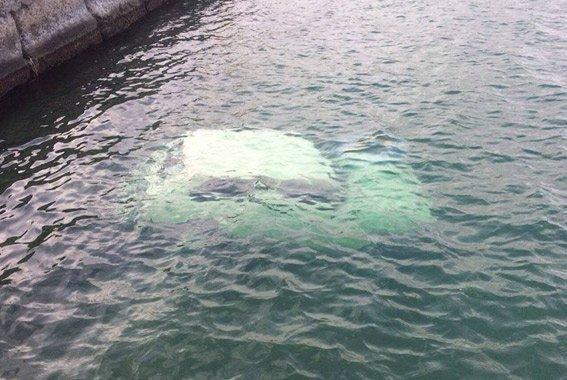 В салоне был ребенок: в реке утонуло авто с 4 пассажирами (ФОТО)