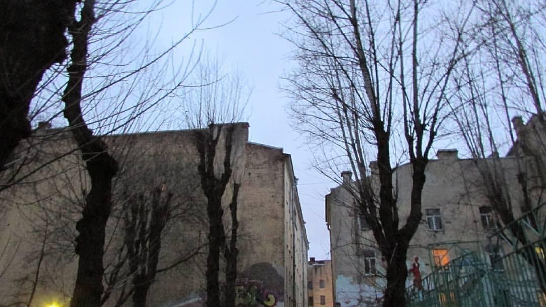 В Днепре возле своего дома на дереве повесился подросток (ФОТО)