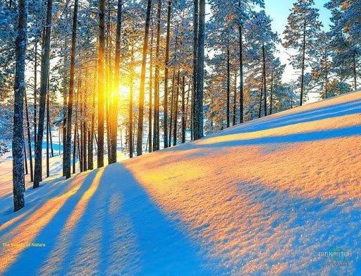 Какая погода будет в Днепре 15 февраля