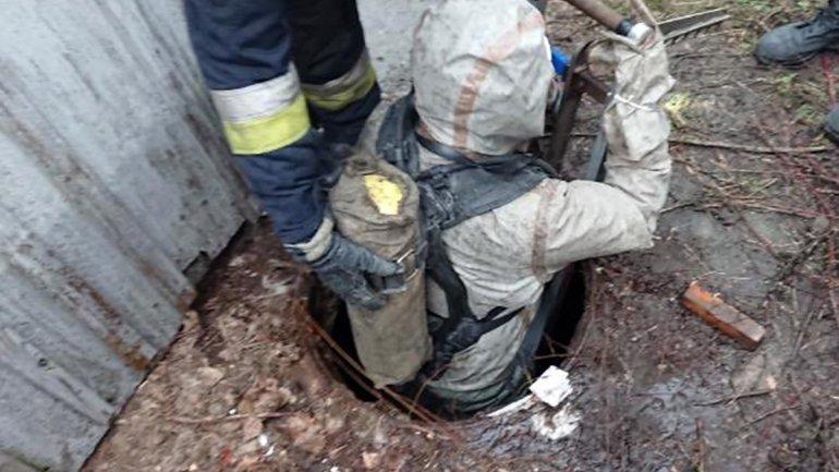 Спасли не всех: в Днепре в выгребной яме нашли 7 щенков