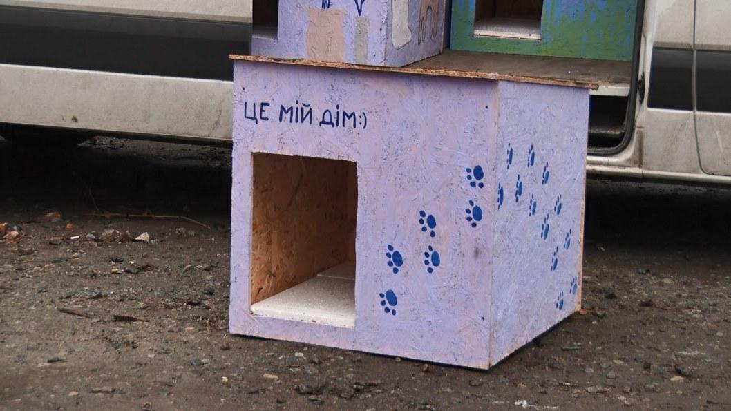 ВІДЕО: Чотирилапим є де зимувати: У Дніпрі встановили 11 будок для безпритульних собак