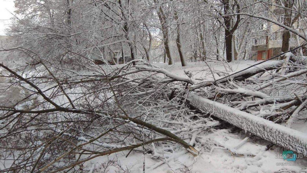 Упавшие столбы и сугробы: как утром выглядит Тополь после метели (ФОТО)