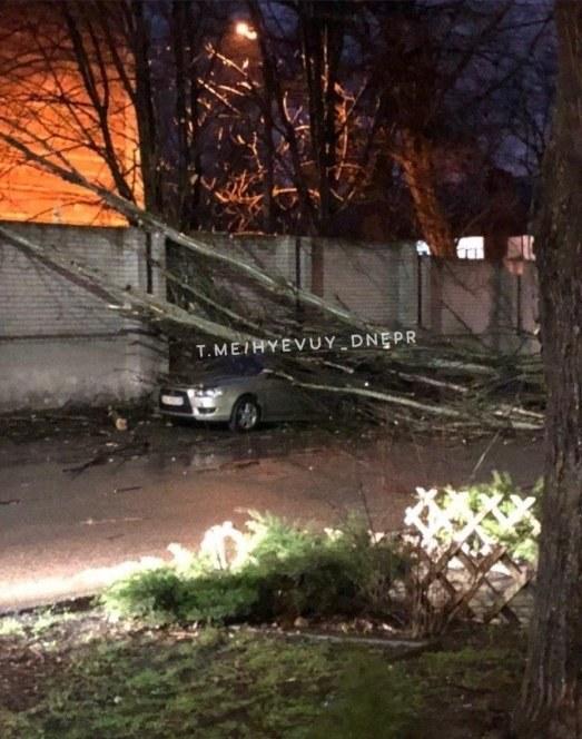 """На улице Феодосиевская, возле сауны """"Термы"""" дерево упало на машину"""