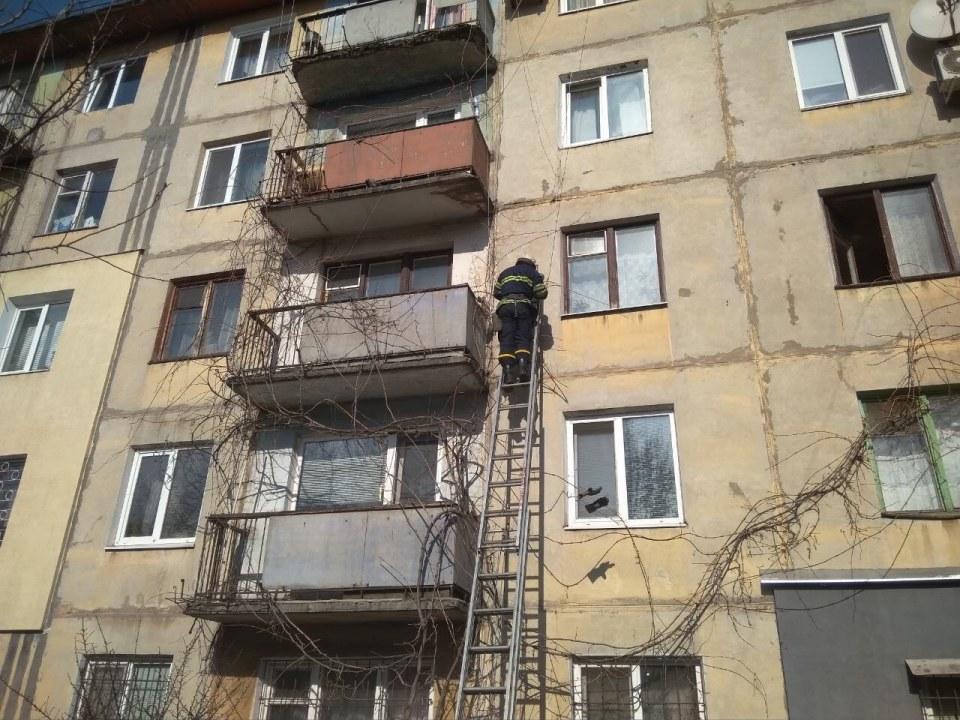 Как в Каменском пять пожарных спасали голубя (ВИДЕО)