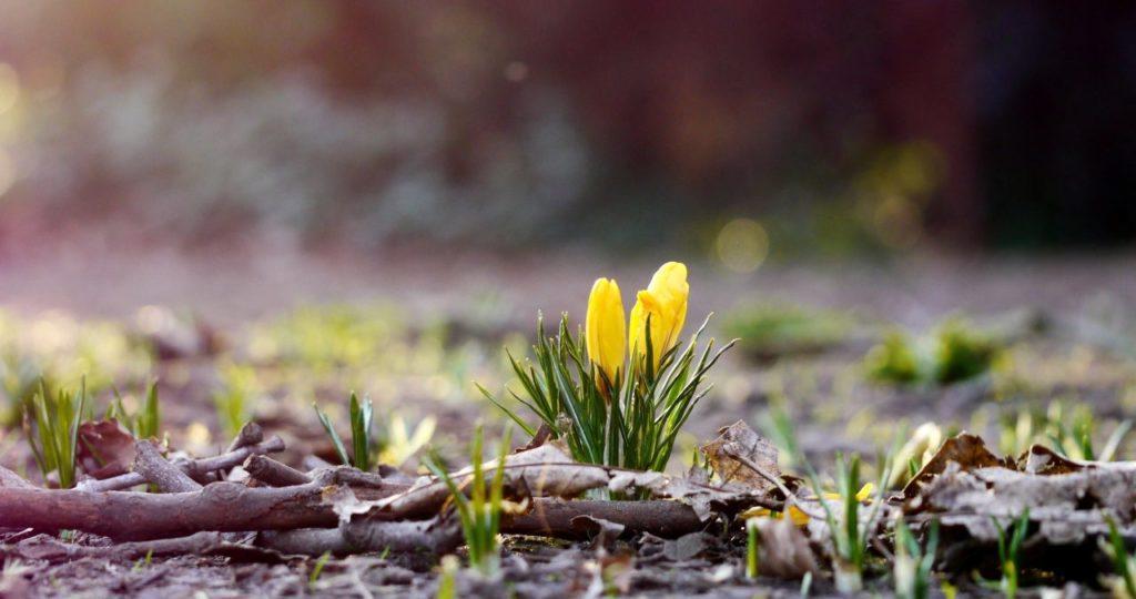 Какая погода будет в Днепре 18 марта