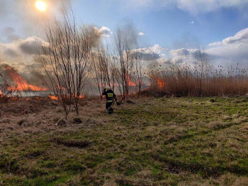 В Днепре горела огромная территория: под угрозой жилые дома