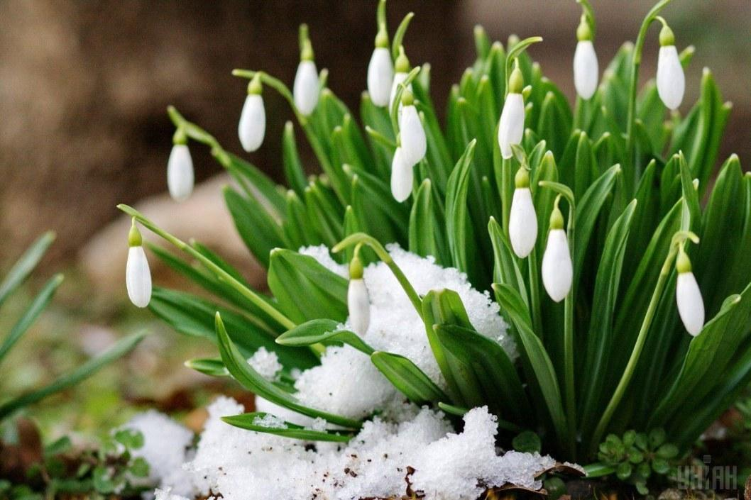 Какая погода будет в Днепре 9 марта