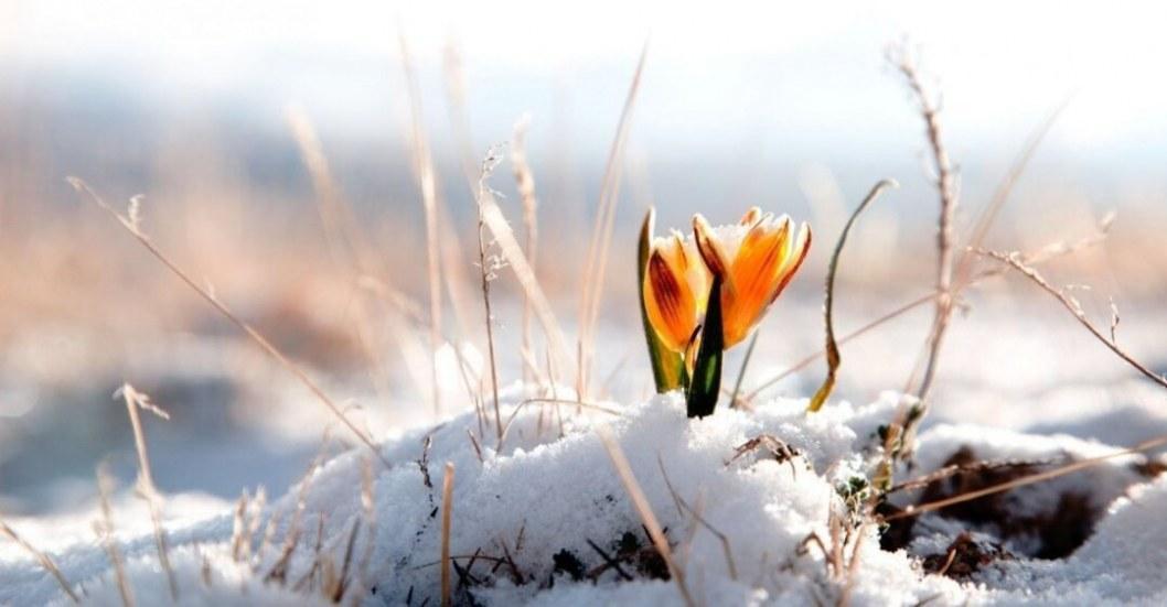 Какая погода будет в Днепре 15 марта