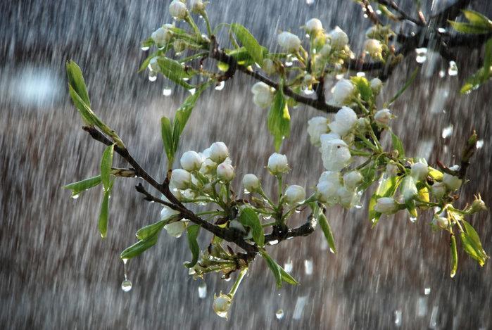Какая погода будет в Днепре 22 марта