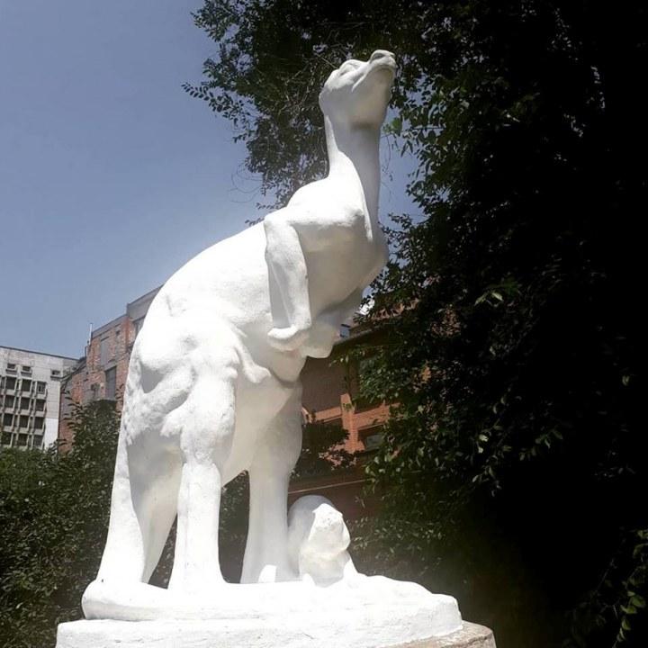 Памятник кенгуру в Днепре