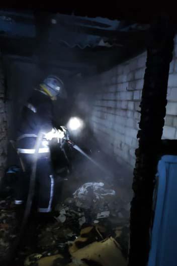 Под Днепром из-за пожара погибли 15 индюшат, также пострадал хозяин усадьбы