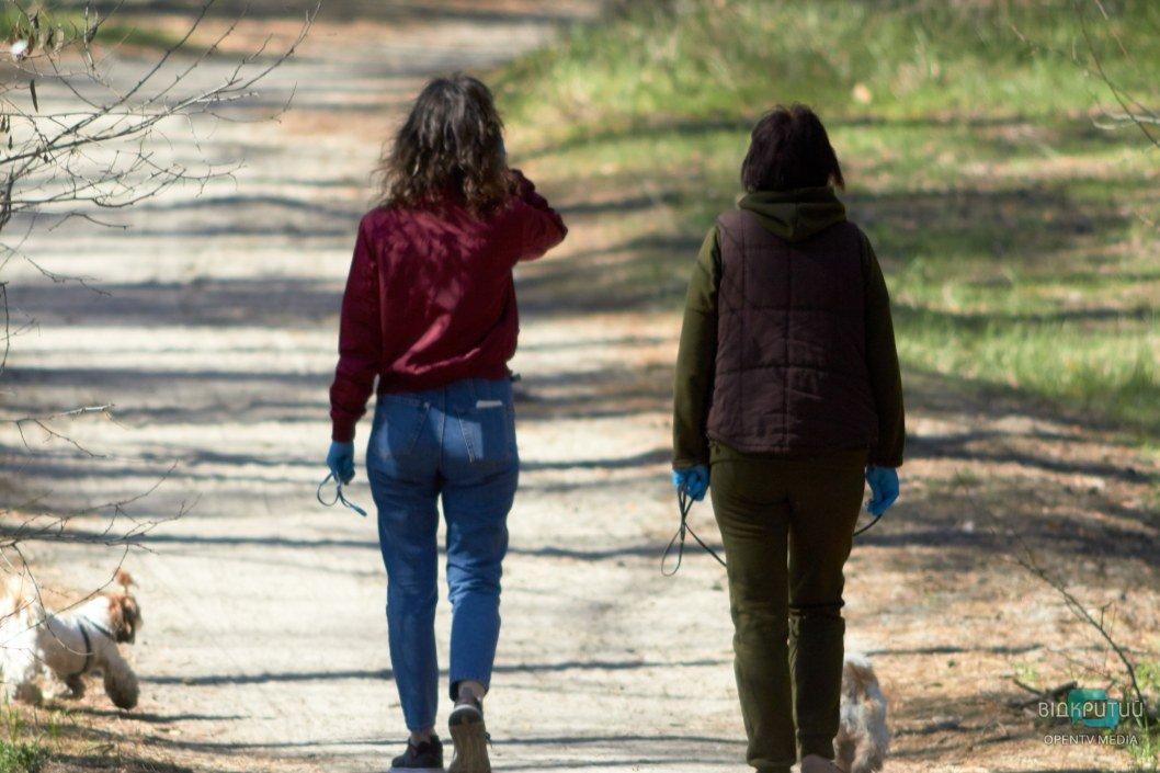 Выгуливать питомцев в зеленых зонах можно, но с соблюдением масочного режима и дистанции