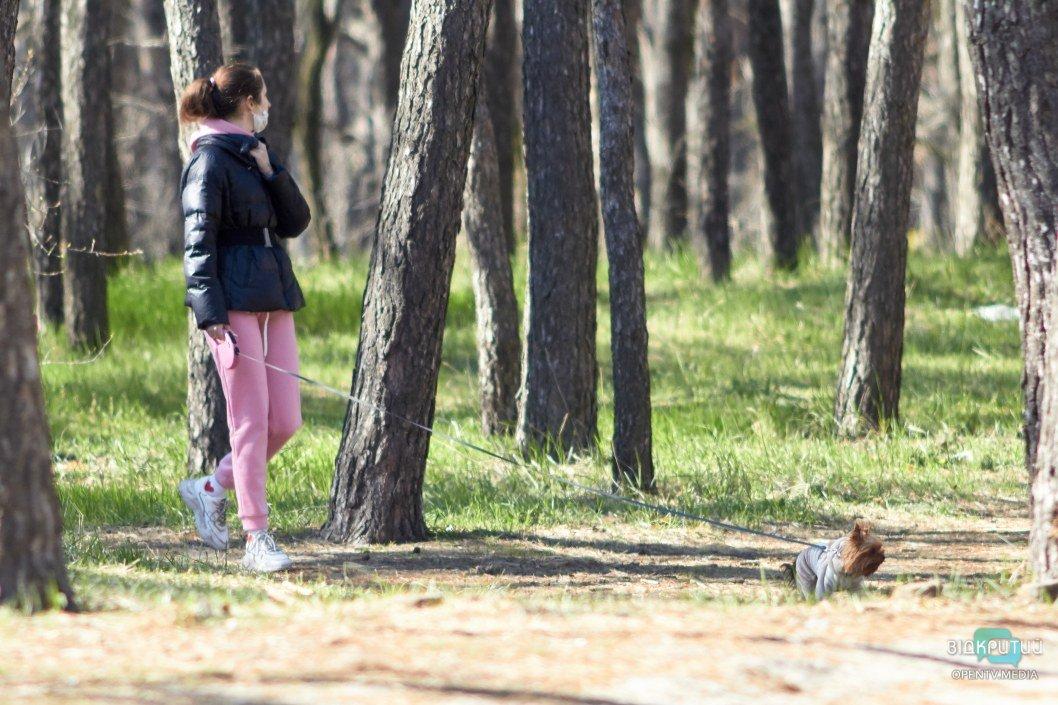 Маленькие питомцы гуляют на травке